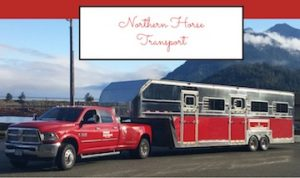 Michelle Beaupre - Northern Horse Transport