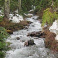 Stowe Creek